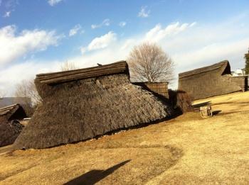 O Museu de História natural de Yokohama foi construído próximo ao sítio arqueológico da cidade, onde  moradias pré-históricas foram reconstruídas sobre suas ruínas de 4 mil anos atrás. Em seu livro Japão História e Presente, José Yamashiro relata a presença humana no arquipélago há 240 mil anos.